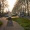 Automobilist overleden na aanrijding tegen boom