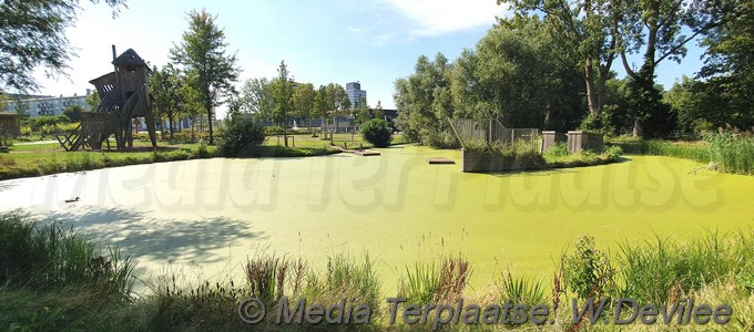 Negatief zwemadvies in Tuin van Noord